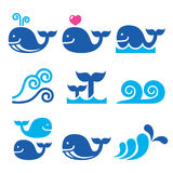 Whale, sea or ocean waves blue icons set. Vector icons set isolated on white - wildlife Stock Image