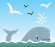 Whale and Seagulls. A cartoon scene of a sufacing whale spouting water with seagulls flying above Stock Image