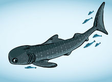 Whale shark and fish. stock illustration