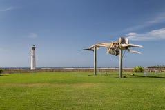 Whale Skeleton, Fuerteventura Royalty Free Stock Images