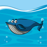 Whale swimming in the ocean. Illustration Royalty Free Stock Photos