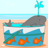 A whale swimming in a pail. A cartoon whale is swimming in a pail by the sea Stock Images