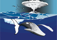Drawing in color of whale under volcano. A whale swimming under volcano Stock Photography