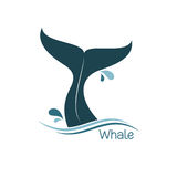 Whale tail icon. Flat icon of a whale tail for your design Stock Photography