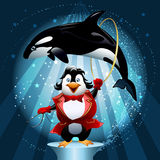 The whale tamer. Illustration with penguin the tamer with a hoop in which jumps trained killer whale in front of circus show background drawn in cartoon style vector illustration