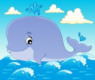 Whale theme image 1 Royalty Free Stock Photos