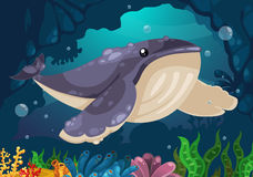 Whale under the sea. Illustration of whale under the sea Royalty Free Stock Photo