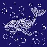 Whale, Vector zentangle print, adult coloring page. Hand drawn artistically, ornamental patterned Whale illustration. Sea Animal collection, t-shirt design Royalty Free Stock Photography