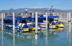 Whale Watch Kaikoura New Zealand Boats Open for Business Royalty Free Stock Images