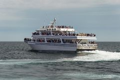 Whale Watchers Boat. Whale watching tour boat near Provincetown, MA, USA stock image