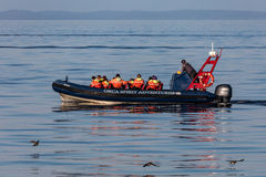 Whale Watchers. Whale watching tour boat in the Strait of Juan de Fuca near Victoria, British Columbia, Canada stock photo