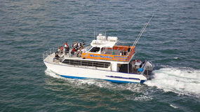 Whale-watching Boat Stock Photo