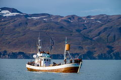 Whale watching boat in Husavik Royalty Free Stock Images
