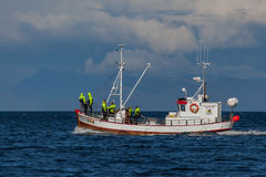 Whale Watching Boat Stock Images