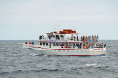 Whale Watching Boat on the sea, Massachusetts Royalty Free Stock Images