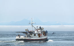 Whale watching boat in Vancouver. British Columbia. Canada Royalty Free Stock Photos