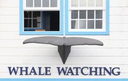 Whale watching building facade with whale tale in Azores. Portug Royalty Free Stock Images