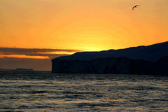 Whale watching in a Ilulissat midnight Stock Photography