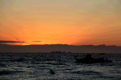 Whale watching in a Ilulissat midnight with boat Royalty Free Stock Photo