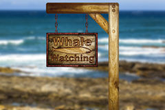 Whale watching sign. Stock Photo