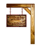Whale watching sign. Stock Image