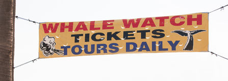 Whale watching tickets tours daily vinyl banner sign Royalty Free Stock Photo