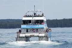 Whale watching tour in Maine stock photos