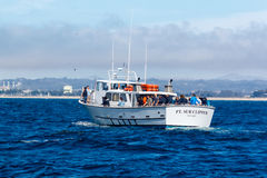 Whale watching vessel Stock Photo