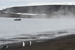 Whaler`s Bay, Antarctica. Steam rises from volcanic vents at the water`s edge. Whaler`s Bay, Deception Island, Antarctica. Dec, 2016 Royalty Free Stock Image