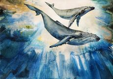 Whales big humpback with baby cub whale on dramatic underwater background watercolor art. Original illustration of