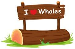 Whales Stock Photos