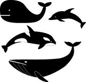 Whales icon vector illustration set Royalty Free Stock Images
