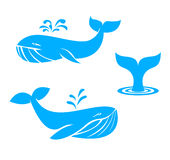 Whales icons. flat design elements. vector illustration. Collection of different whales, blue on white background of ocean mammals stock illustration