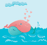Whales in love Stock Images