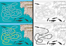 Whales maze Stock Photos