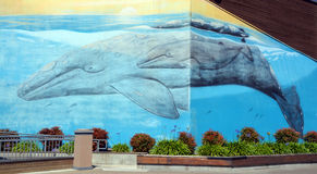Whales mural. SAN FRANCISCO CA US AAPRIL 14 2015: Whales mural in San Francisco. San Francisco is a virtual outdoor art gallery where city walls become the royalty free stock image