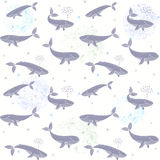 Whales seamless wallpaper. Beautiful seamless wallpaper with cute whales on a white background Stock Image