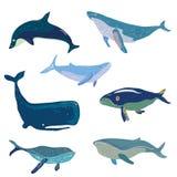 Whales set - hand drawn design, illustration Royalty Free Stock Photos