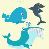Whales and shark Stock Image