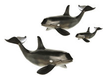 Whales. Toy Whales on White Background royalty free stock photo