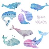 Whales watercolor texture animal watercolor splash abstract texture character drawing illustration geometric clip art for birthday. Party print celebration Stock Image