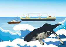 Whaling industry Stock Images