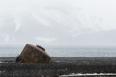 Whaling remains at Deception Island Royalty Free Stock Photography