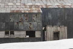 Whaling remains at Deception Island Royalty Free Stock Photo