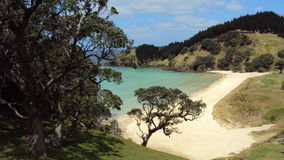 Whananaki Nya Zeeland Royaltyfria Foton