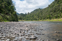 Whanganui flod Royaltyfri Fotografi