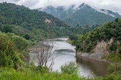 Whanganui flod på den dimmiga dagen Royaltyfria Bilder
