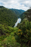 Whanganui-Fluss Lizenzfreie Stockfotografie