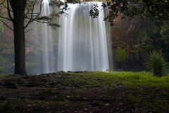 Whangarei falls Royalty Free Stock Photography