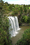 Whangarei falls Stock Image